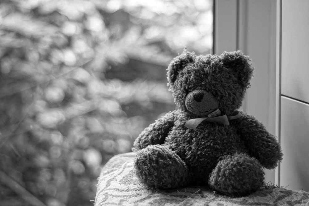grayscale photography of teddy bear